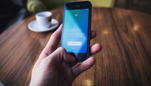 Twitter überrascht: Erstmals Nutzerzahlen für Deutschland